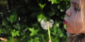 Dom do Espírito: dádiva aos outros