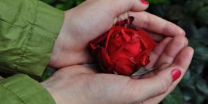 O amor se manifesta na fidelidade, no acolhimento e na misericórdia