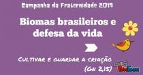 Biomas brasileiros e a defesa da vida
